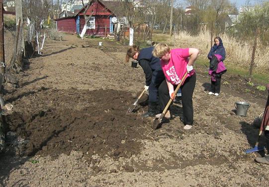 Акция «С заботой о старшем поколении» проводится в Кореличском районе