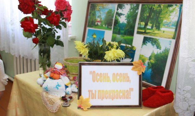 Мероприятие ко Дню пожилых людей провели в Берестовицком районе