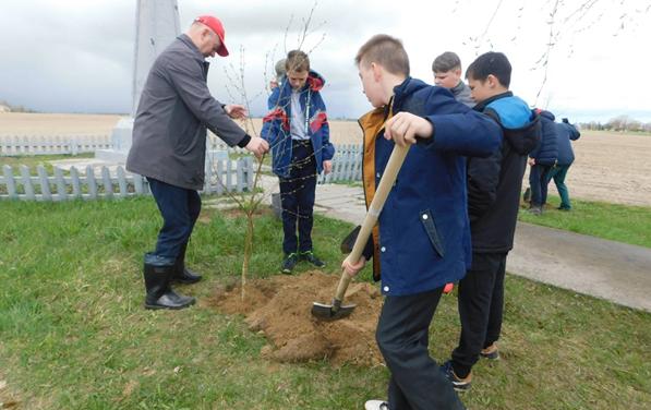 Посадили деревья памяти