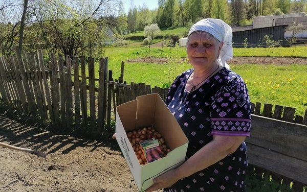 Весенние посадки в филиале ТЦСОН Новогрудского района в аг.Брольники