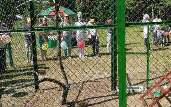 Мини-зоопарк открыли в Василишках